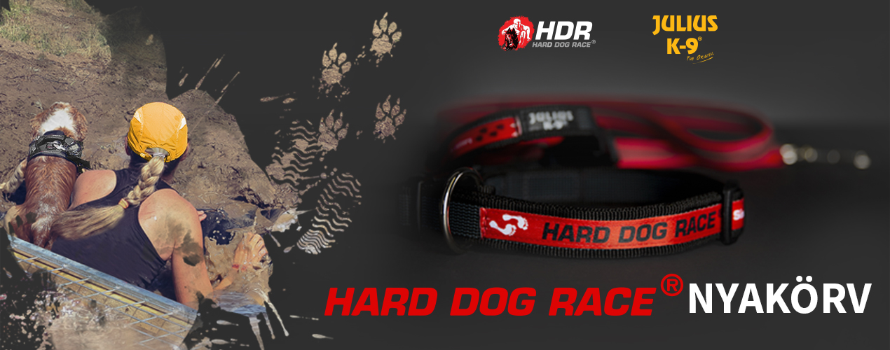 Hard Dog Race