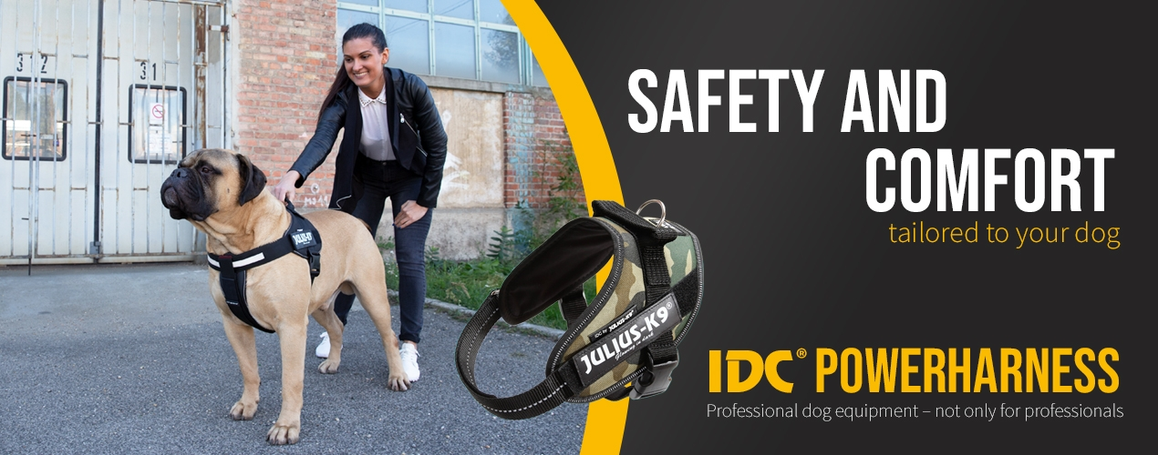 IDC Powerharness