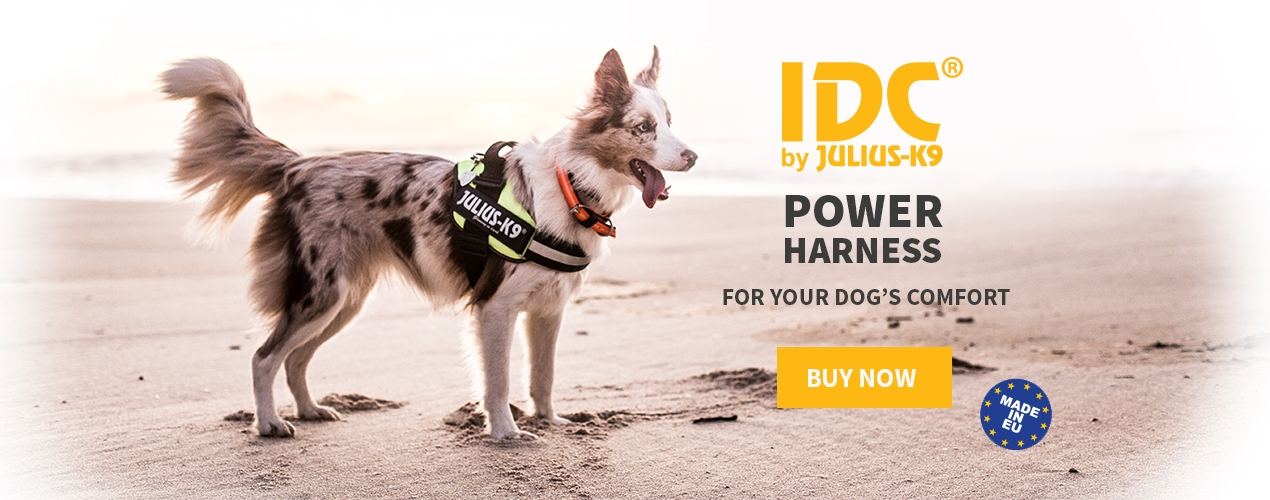 IDC dog harness