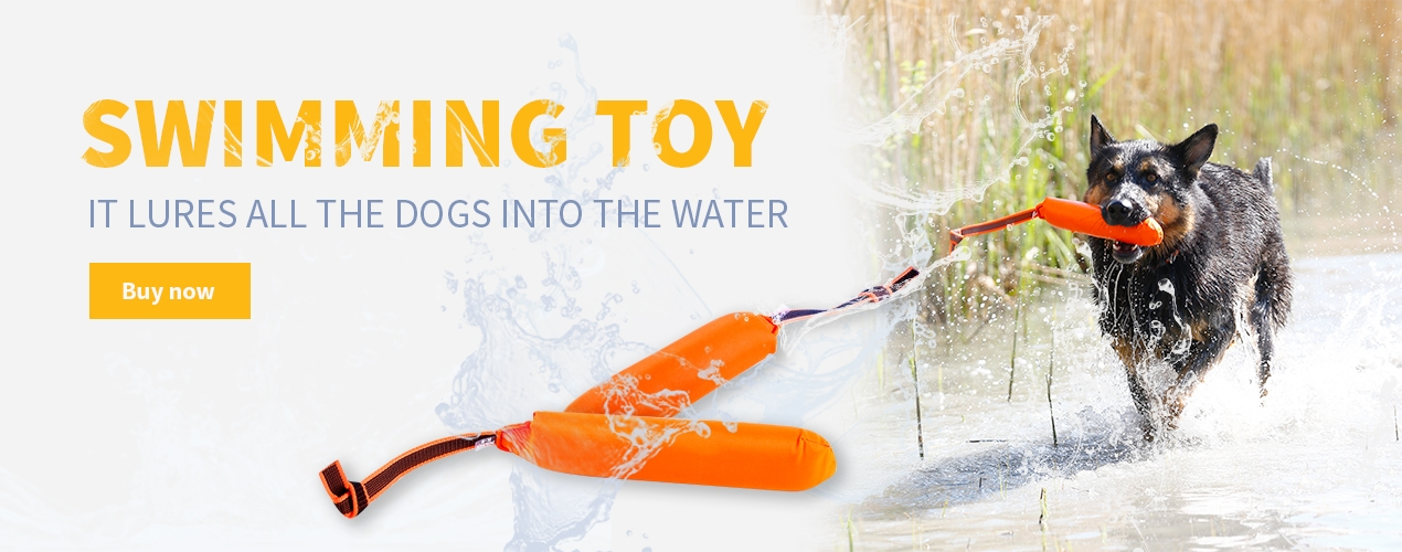 Swimming toy in orange